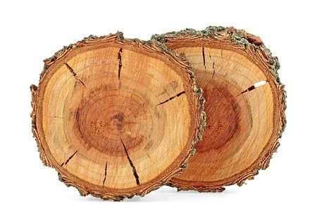 Struttura di legno di albicocca. Fette di albero con anelli di crescita isolati su sfondo bianco. Messa a fuoco selettiva.
