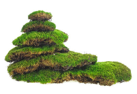 Green mossy hill isolated on a white background. Moss pyramid. Stok Fotoğraf