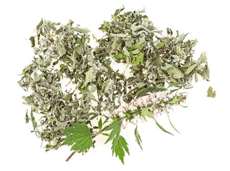 Motherwort plant on a white background, top view. Heap of dried and fresh plant. 写真素材