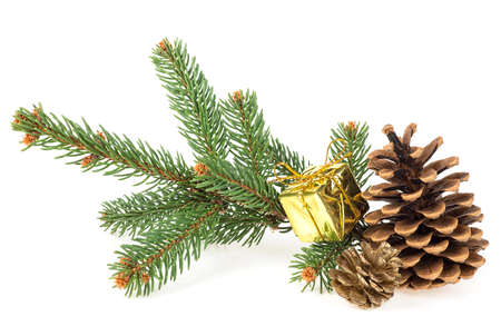Golden gift box with cones and fir tree branch isolated on white background
