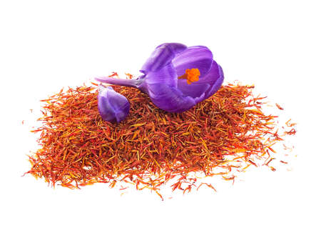 Flowers of crocus and dried saffron spice isolated on a white background. Crocus sativus.