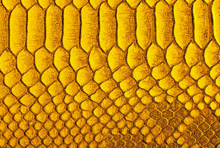 Yellow python skin background. Yellow reptile leather texture. Reptile exotic leather.