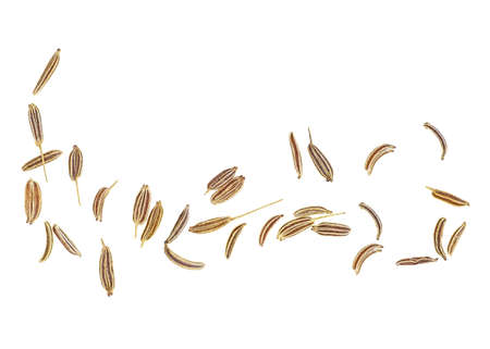 Cumin seeds isolated on white background, top view. Caraway seeds. Фото со стока