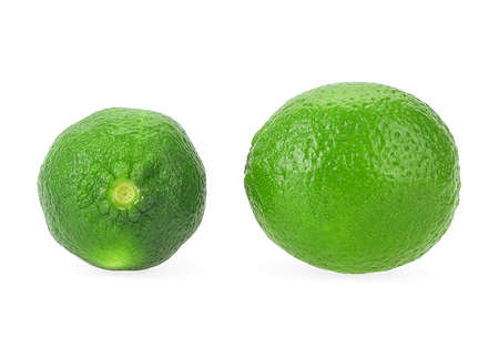 Lime. Citrus lime fruit isolated on a white background. Fresh lime.