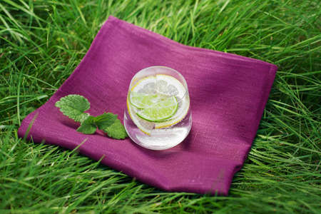 sour grass: Fresh summer drink with lime and lemon on the grass, mint leafs next to glass