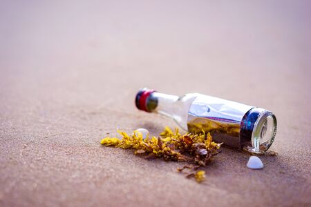bottle on a sandy beach in the morning