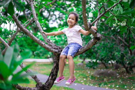 happy little asian girl climb and sit on tree branches while playing in the park 版權商用圖片