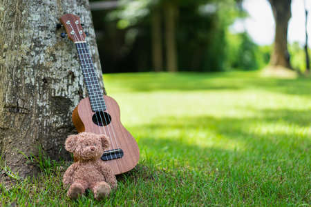 Ukulele guitar with bear doll under the tree on green grass field with sunlight