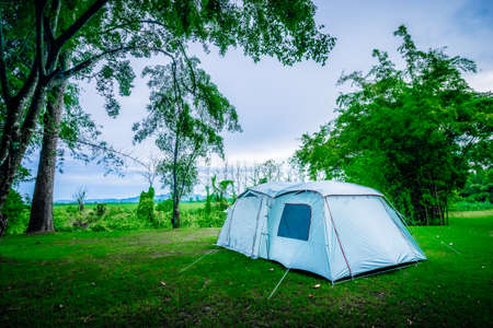 Camping and tent under tree in nature park