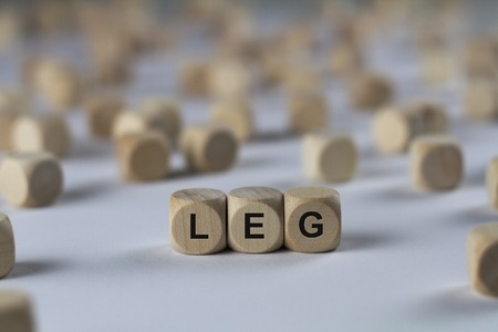 leg - cube with letters, sign with wooden cubes Stock Photo