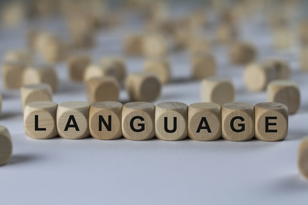 terminology: language - cube with letters, sign with wooden cubes