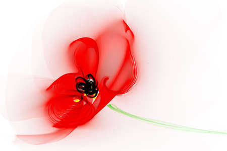 Abstraction red poppy flower photo