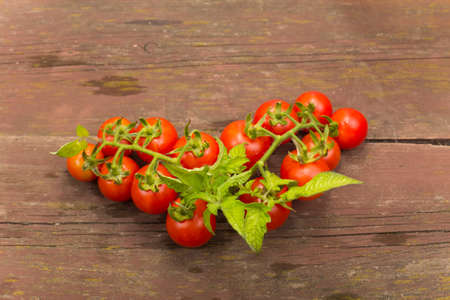 cherry varieties: branch with cherry tomato varieties on wooden table