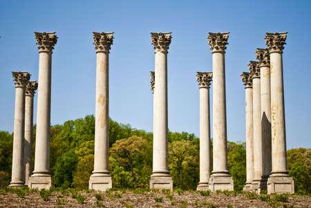 U.S. Capitol Columns