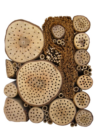 feedstock: Insect hotel
