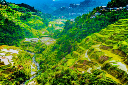 Banaue Rice Terraces valley view in northern Luzon, Philippines