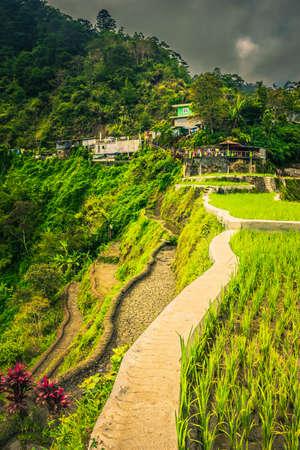 Terrace walkway along Banaue Terraces in Banaue, Philippine
