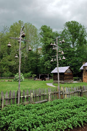 Log cabin with several gourd bird houses photo