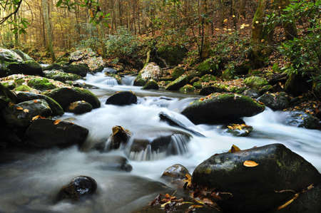A slow moving creek in fall running thru Smoky Mountain National Park Stock Photo