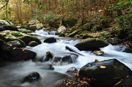 thru: A slow moving creek in fall running thru Smoky Mountain National Park Stock Photo