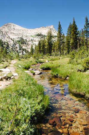 high sierra: High sierra peaks and a small creek
