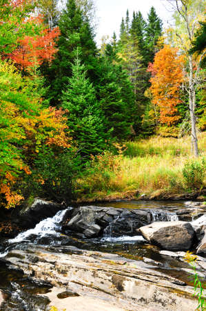 Fall colors and steam cascading over rocks