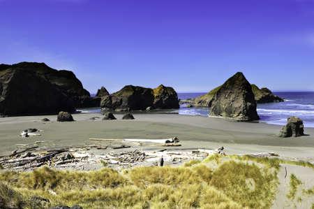 northwest: Black sand beach on the pacific northwest coastline Stock Photo