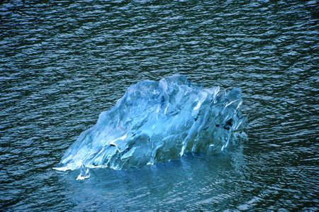 sawyer: A blue ice berg from Sawyer Glacier in Alaska