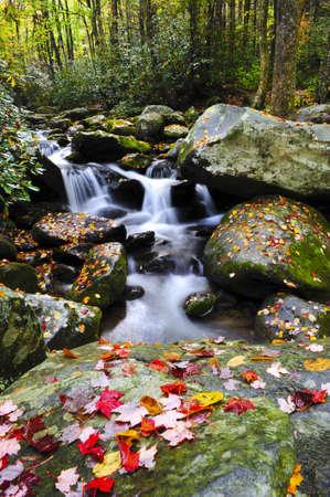 Een kleine waterval in de Smoky Mountains met rode bladeren