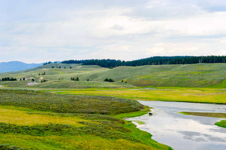hayden: Buffalo crossing the river in the Hayden Valley Yellowstone national park Stock Photo
