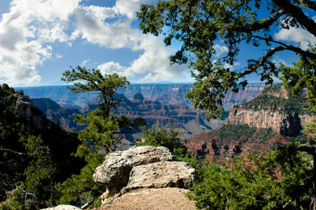 View of the Grand Canyon National Park, Arizona