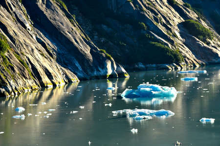 Iceberg floating in the Tracy Arm Fjord, Alaska