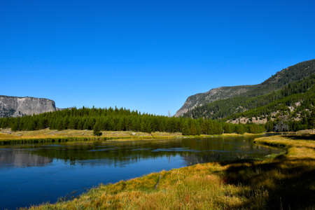 Landscape of the Madison River in Yellowstone National Park.