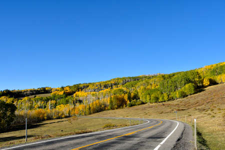 Aspenb trees changing colors along a hillside in the Dixie National Forest, Rocky Mountains, Utah.