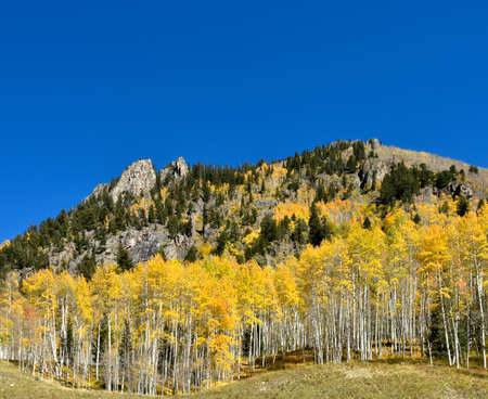 Fall colors on the San Juan Skyway, Colorado.
