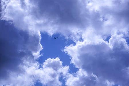 blue arrow: Glider flying against blue arrow