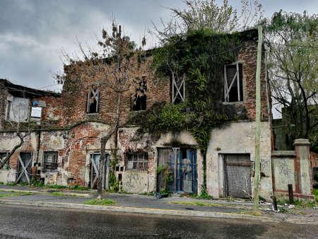 アルゼンチンで草に覆われた家 報道画像