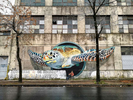 revitalization: Turtle wall painting