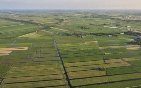 Aerial view of peat excavation meadow landscape with agricultural function near Vinkeveen in the Netherlands