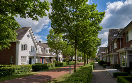Residential street in the Netherlands with wide cycle lane, green hedge, sidewalk and no cars. Urbanism design for slow transportation neighborhood 版權商用圖片