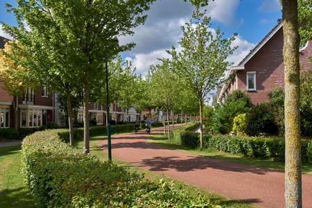 Residential street in the Netherlands with wide cycle lane, green hedge and no cars. Urbanism design for slow transportation neighborhood 版權商用圖片