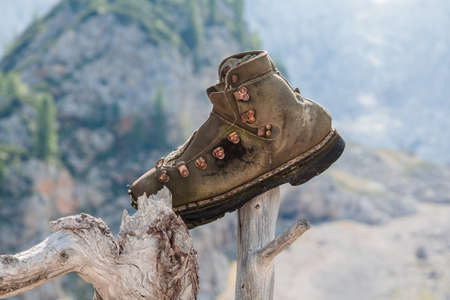 Old leather tourist shoe planted on a stick.