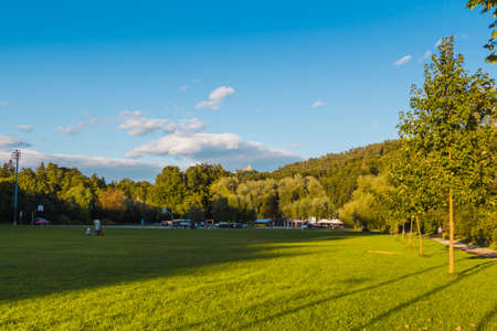 clipped: Park with clipped grass in the evening sun. Stock Photo