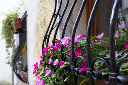 window bars: Window with bars decorated with pink flowers.