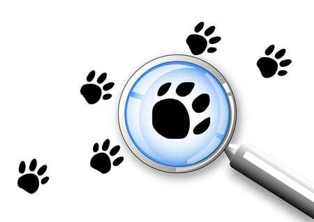 inquire: search concept clip-art Stock Photo