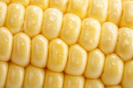 macro of corn photo