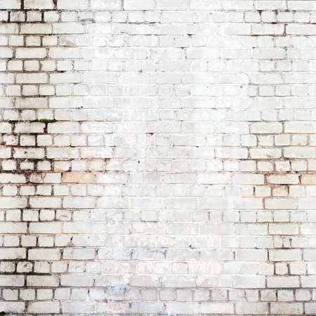 Brick wall background, texture for graffiti Stock Photo - 17095596
