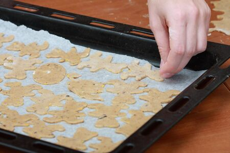 tinplate: Ginger cookies