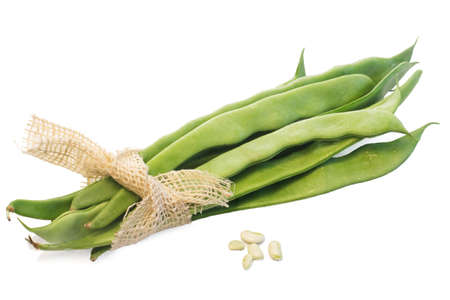 green broad beans photo