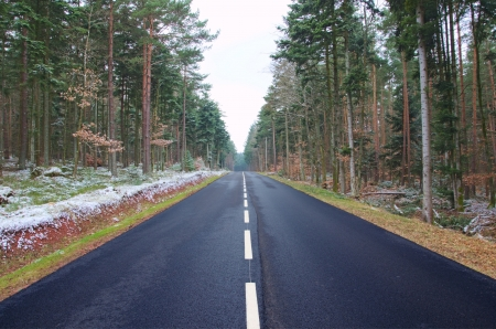A road in the Black Forest running between snowy woods photo